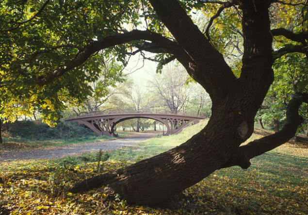 Central_Park_New_York_City_New_York_23_cropped